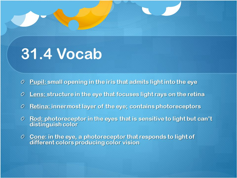 31.4 Vocab Pupil: small opening in the iris that admits light into the eye. Lens: structure in the eye that focuses light rays on the retina.