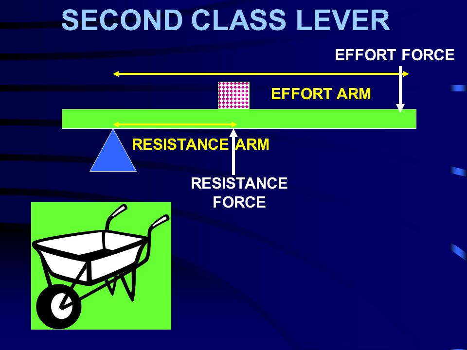 What is effort force?