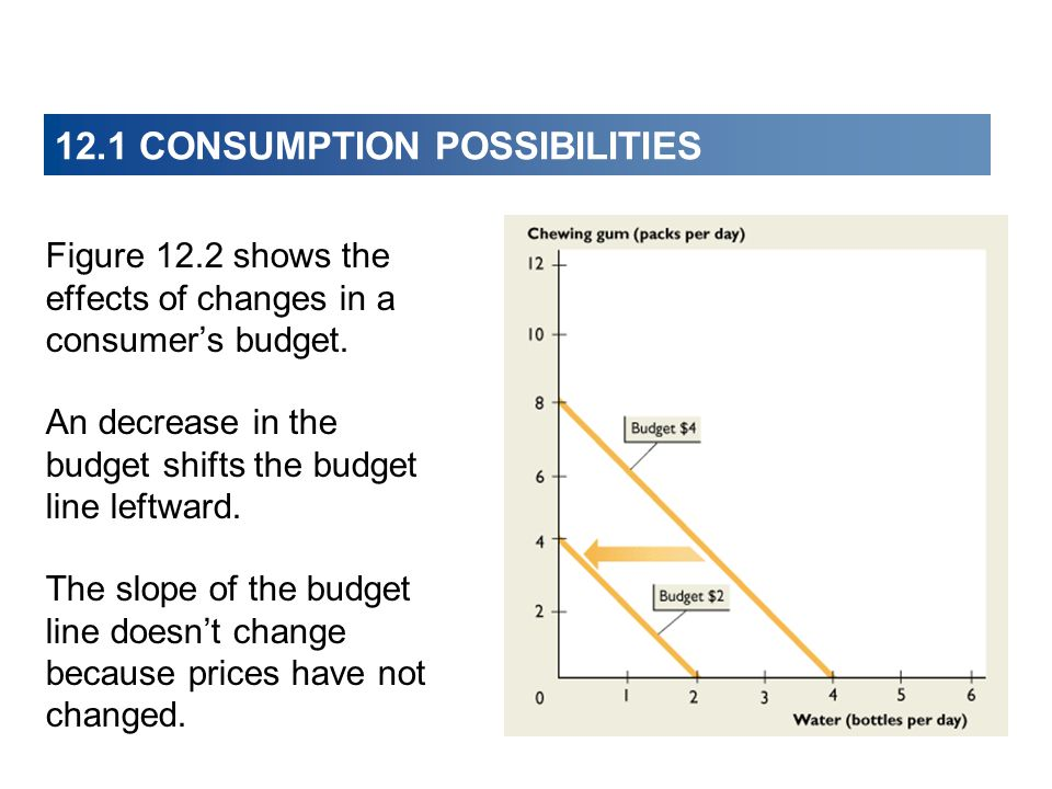 12.1 CONSUMPTION POSSIBILITIES