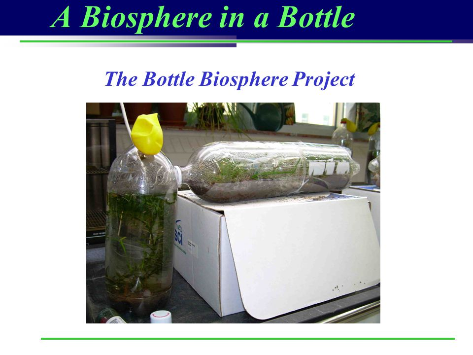 A Biosphere in a Bottle The Bottle Biosphere Project