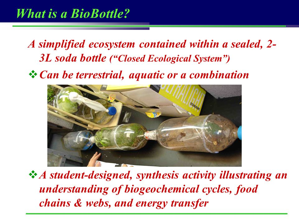 What is a BioBottle A simplified ecosystem contained within a sealed, 2-3L soda bottle ( Closed Ecological System )