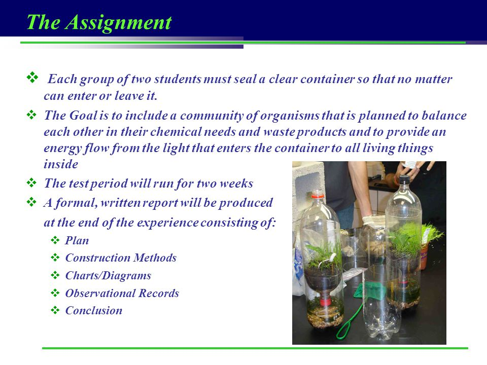 The Assignment Each group of two students must seal a clear container so that no matter can enter or leave it.