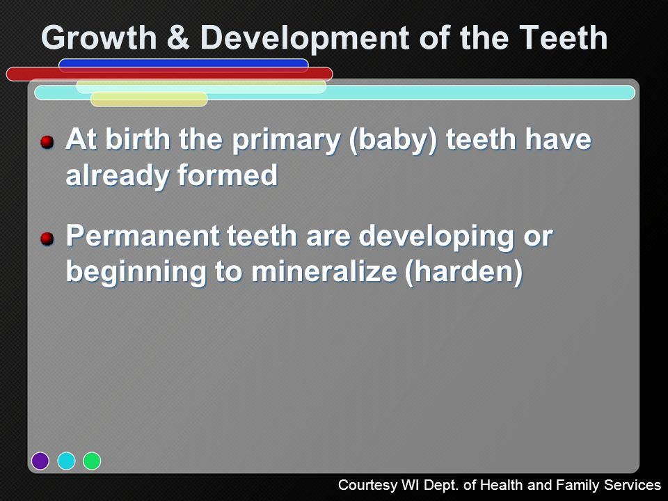 Growth & Development of the Teeth