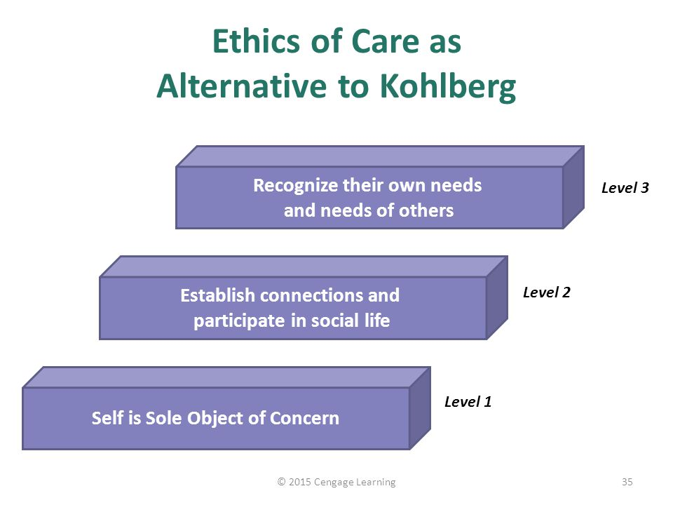 sources of professional values and ethics A main source for an organizational code of ethics is the business owner these individuals choose the ethical stance of their company since they are responsible for all aspects of the organization while managers and employees may not agree with the business owner on his ethical values, the owner may choose to hire.