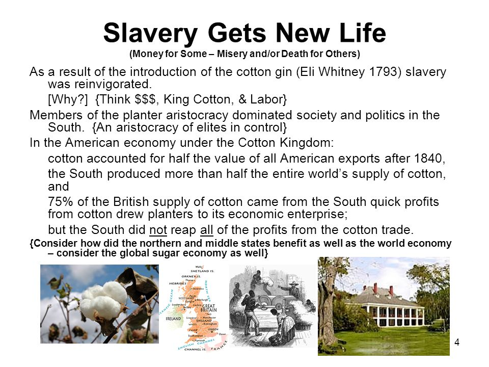 The Benefits of Slavery to the American Economy Essay Sample
