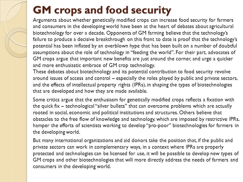 GM crops and food security