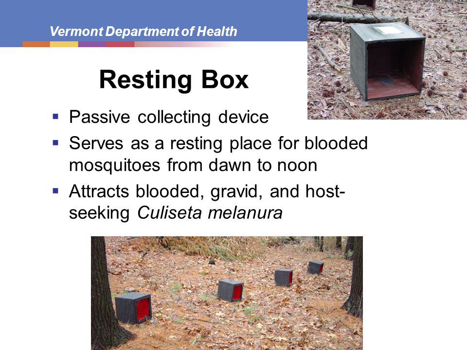 Resting Box Passive collecting device