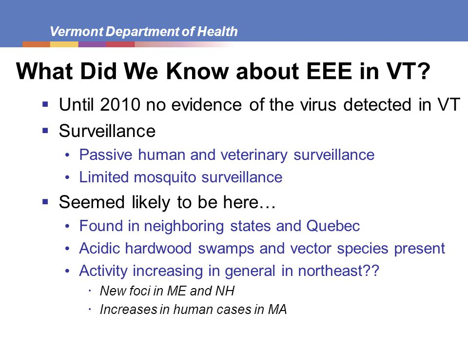 What Did We Know about EEE in VT