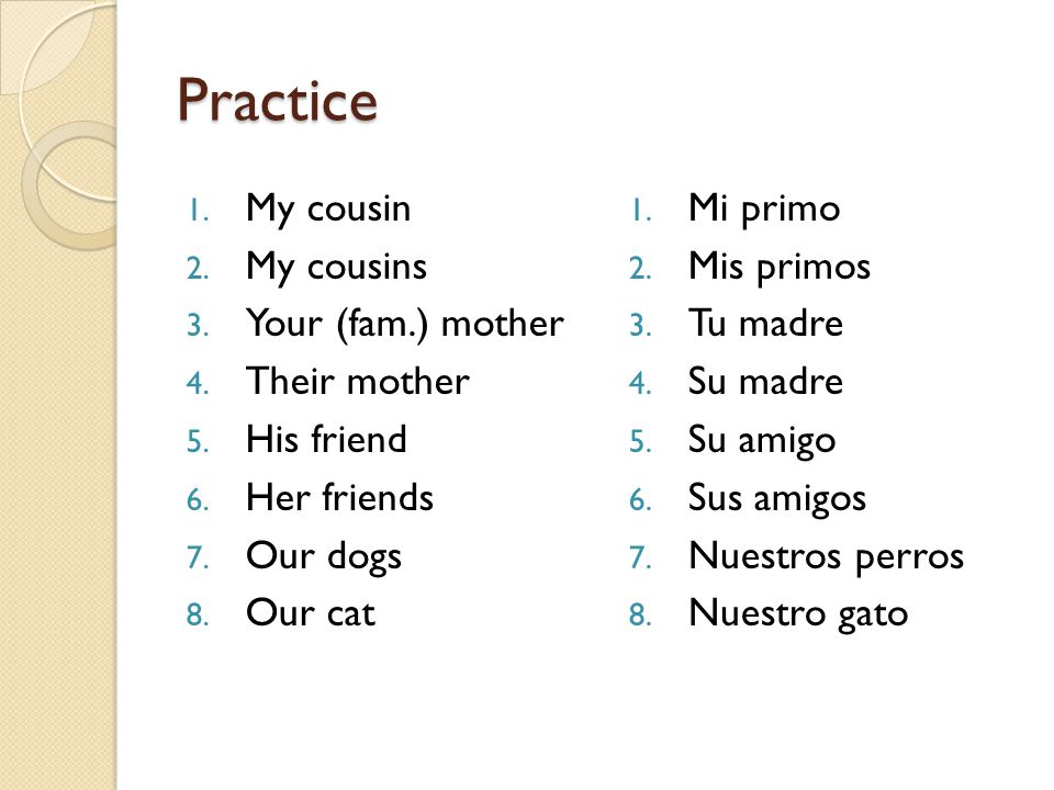 Practice My cousin My cousins Your (fam.) mother Their mother