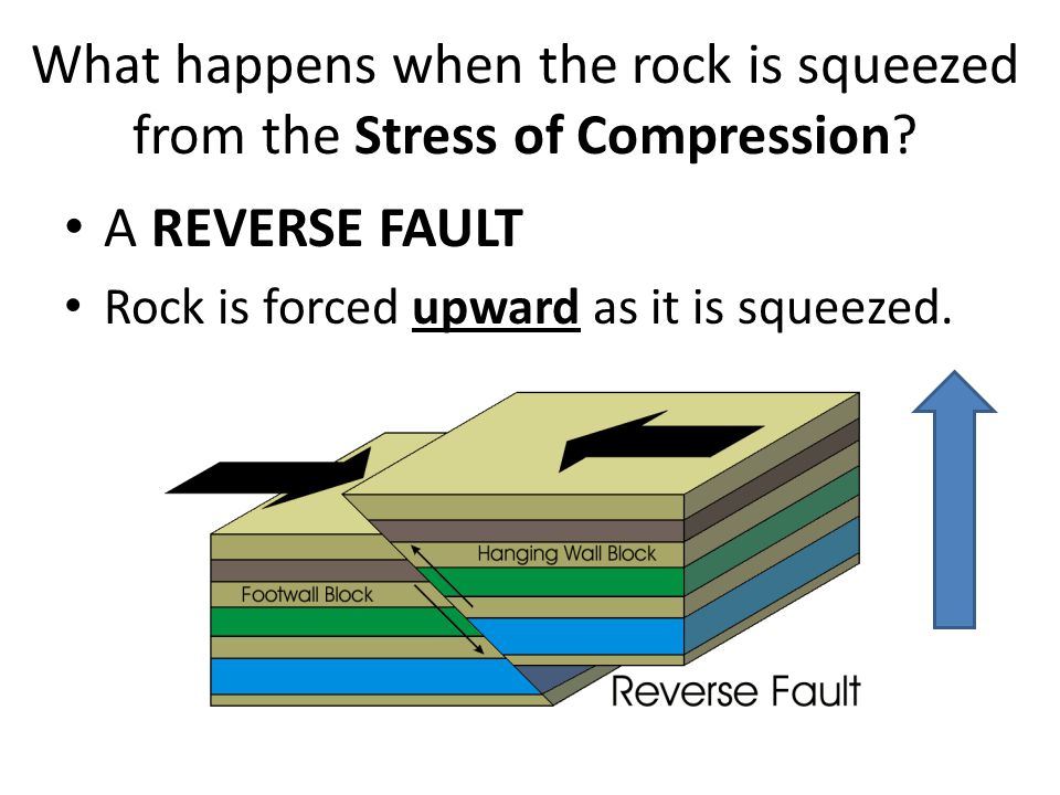 What happens when the rock is squeezed from the Stress of Compression