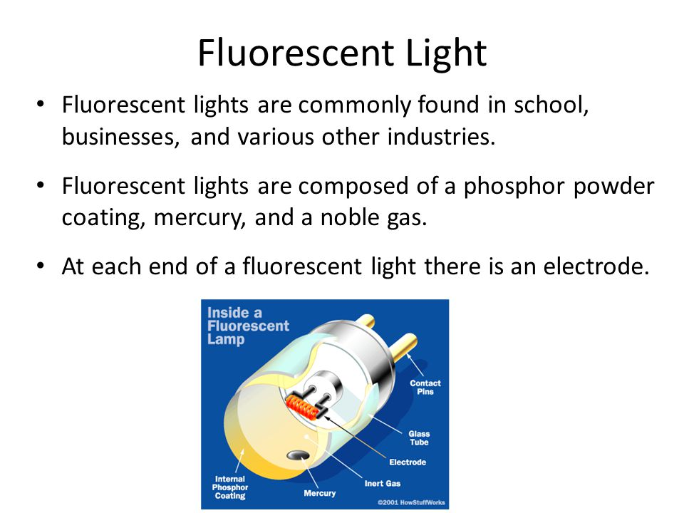 Fluorescent Light Fluorescent lights are commonly found in school, businesses, and various other industries.