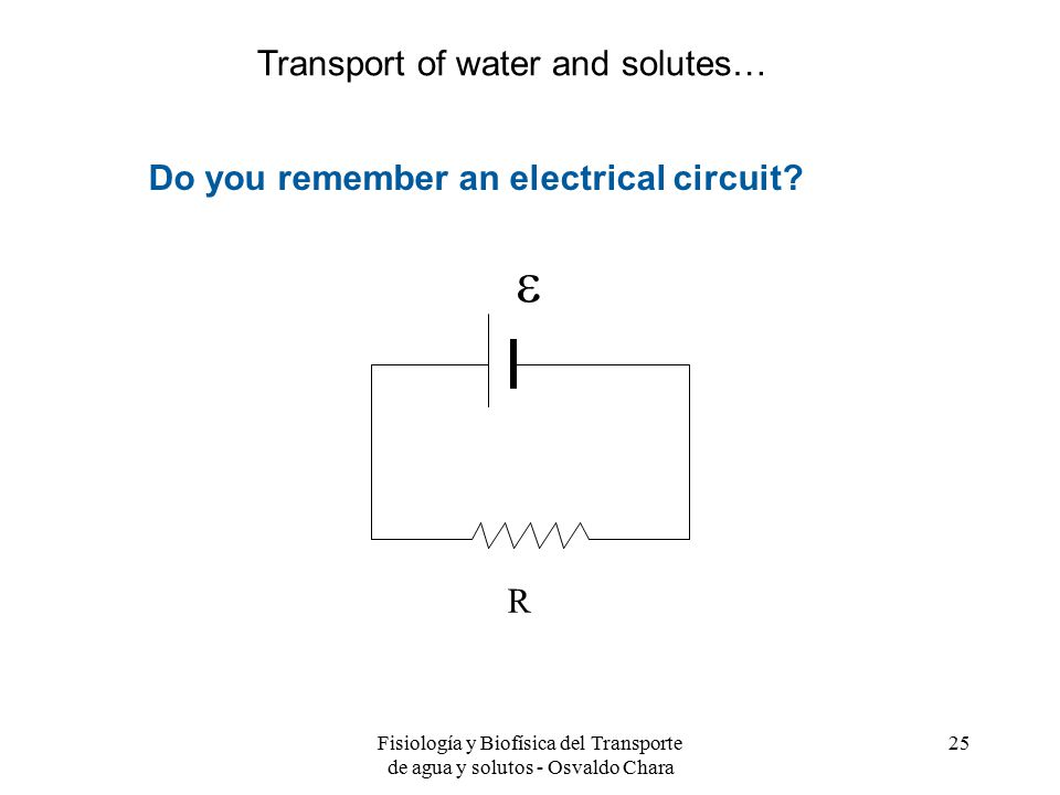  Transport of water and solutes…