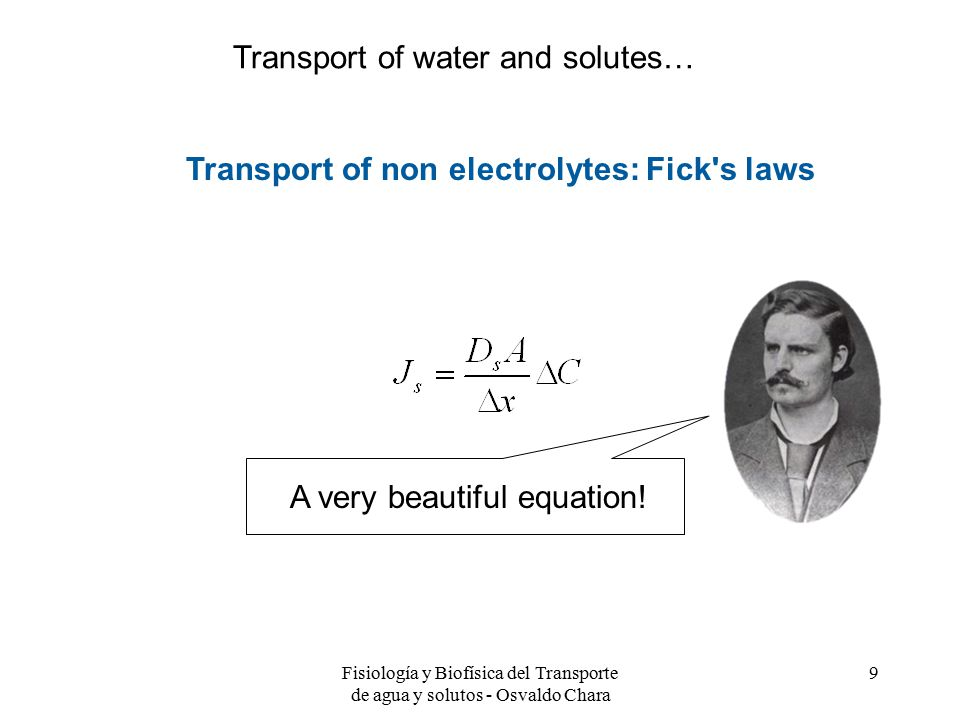 Transport of water and solutes…