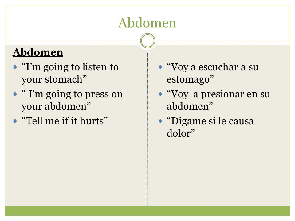 Abdomen Abdomen I'm going to listen to your stomach