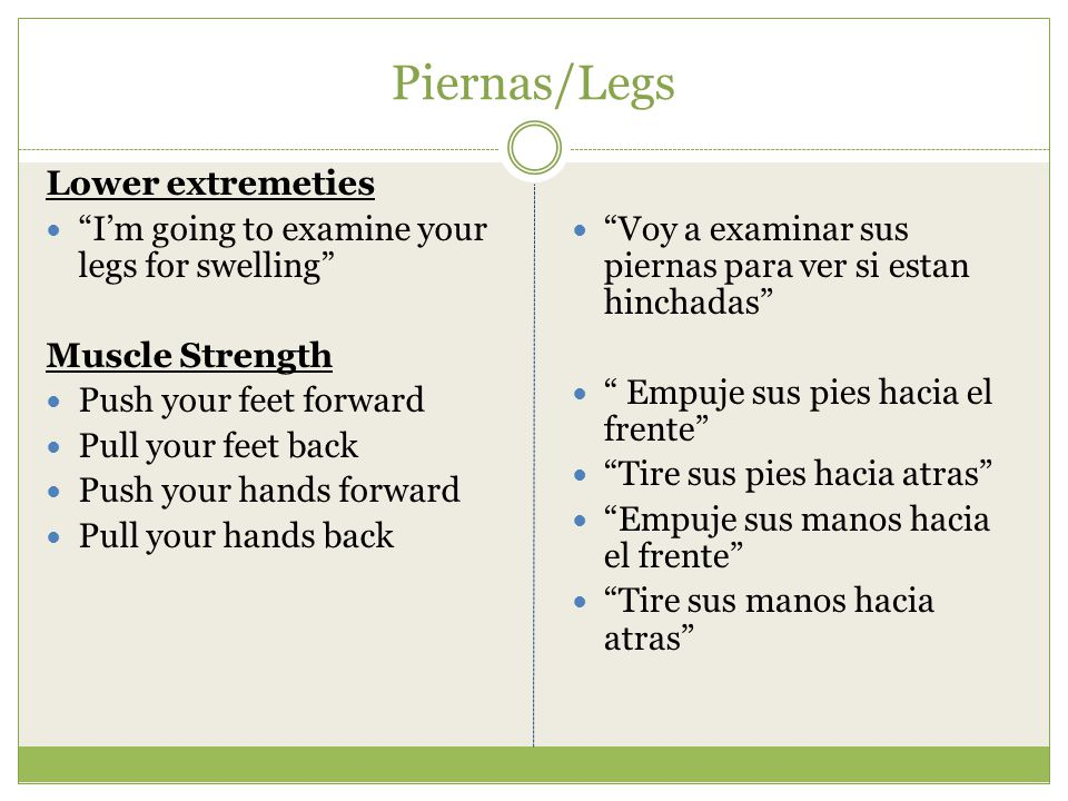 Piernas/Legs Lower extremeties