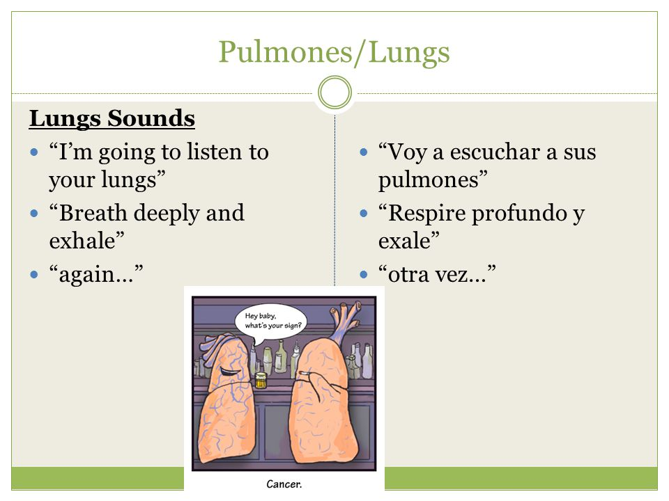 Pulmones/Lungs Lungs Sounds I'm going to listen to your lungs