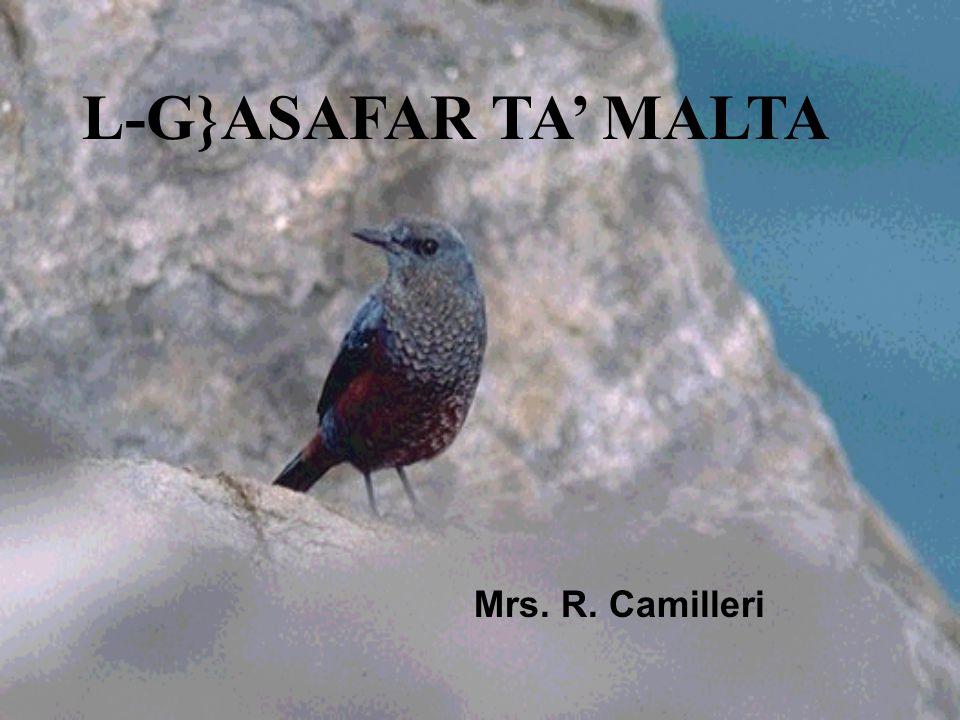 L-G}ASAFAR TA' MALTA Mrs. R. Camilleri