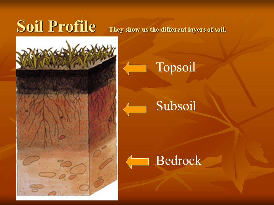 Soil it s more than just dirt ppt download for 6 layers of soil
