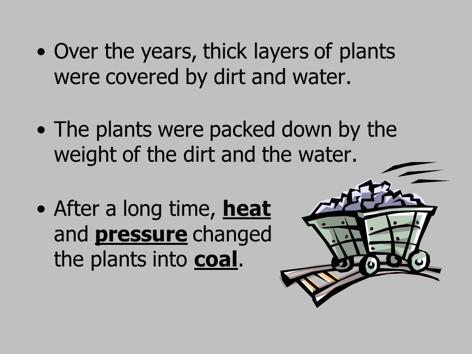 Over the years, thick layers of plants were covered by dirt and water.