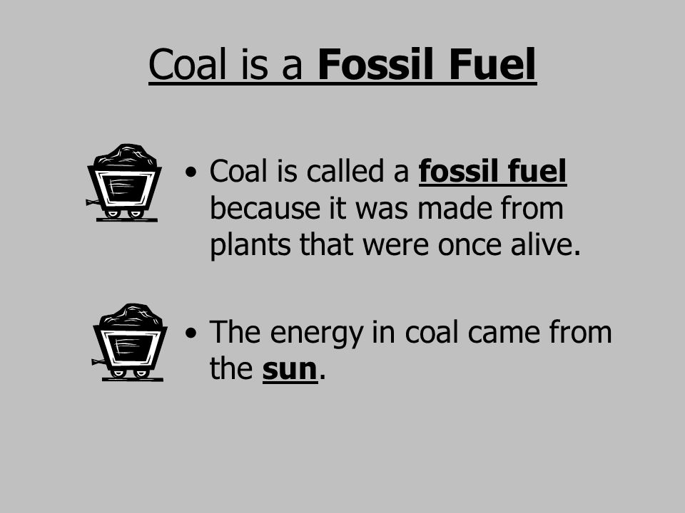 Coal is a Fossil Fuel Coal is called a fossil fuel because it was made from plants that were once alive.