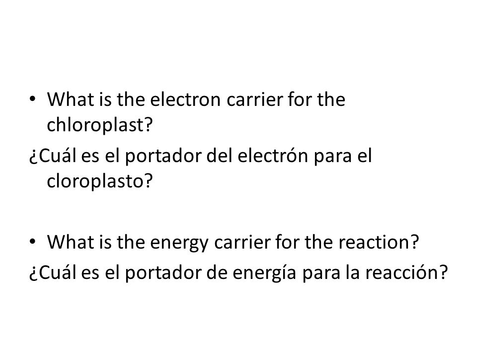 What is the electron carrier for the chloroplast