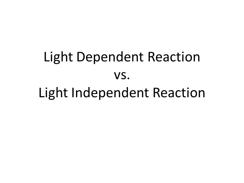 Light Dependent Reaction vs. Light Independent Reaction