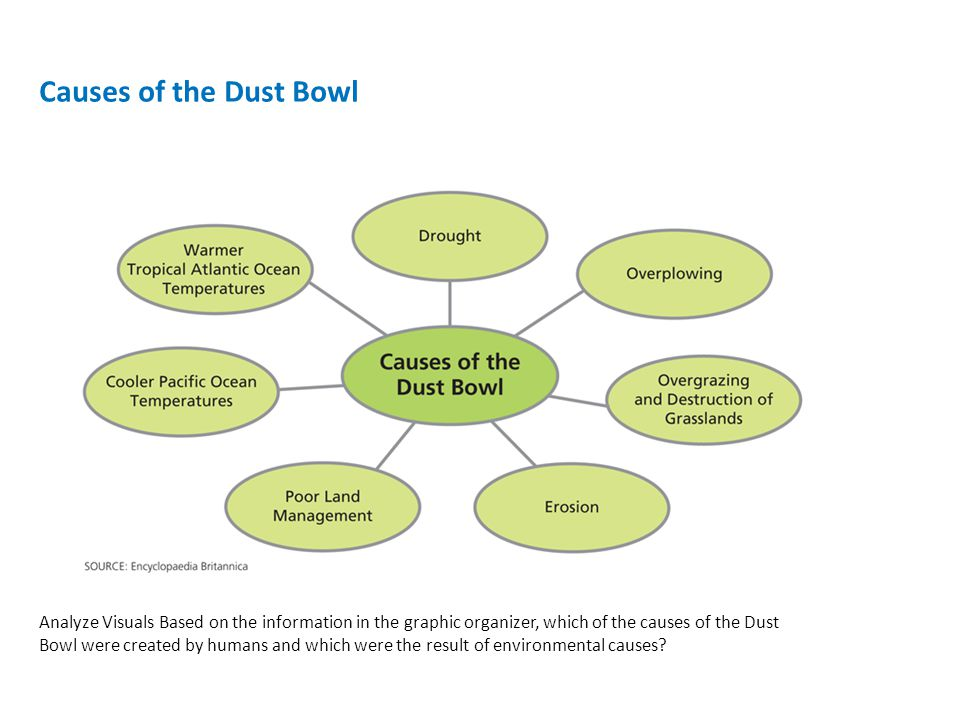 causes of the dust bowl Causes of the dust bowl one of the most devastating environmental crises that occurred in the united states was the dust bowl the dust bowl.