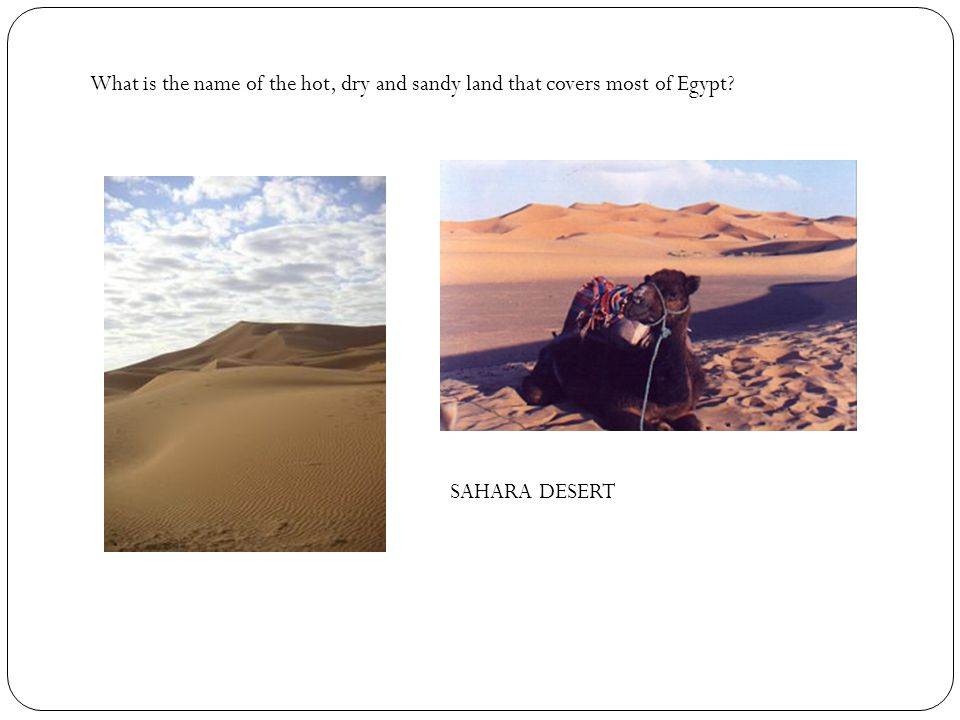 What is the name of the hot, dry and sandy land that covers most of Egypt