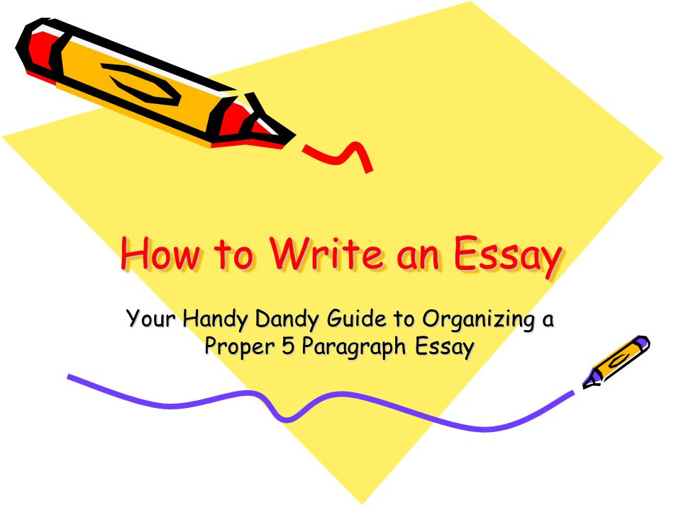 write an essay on libraries