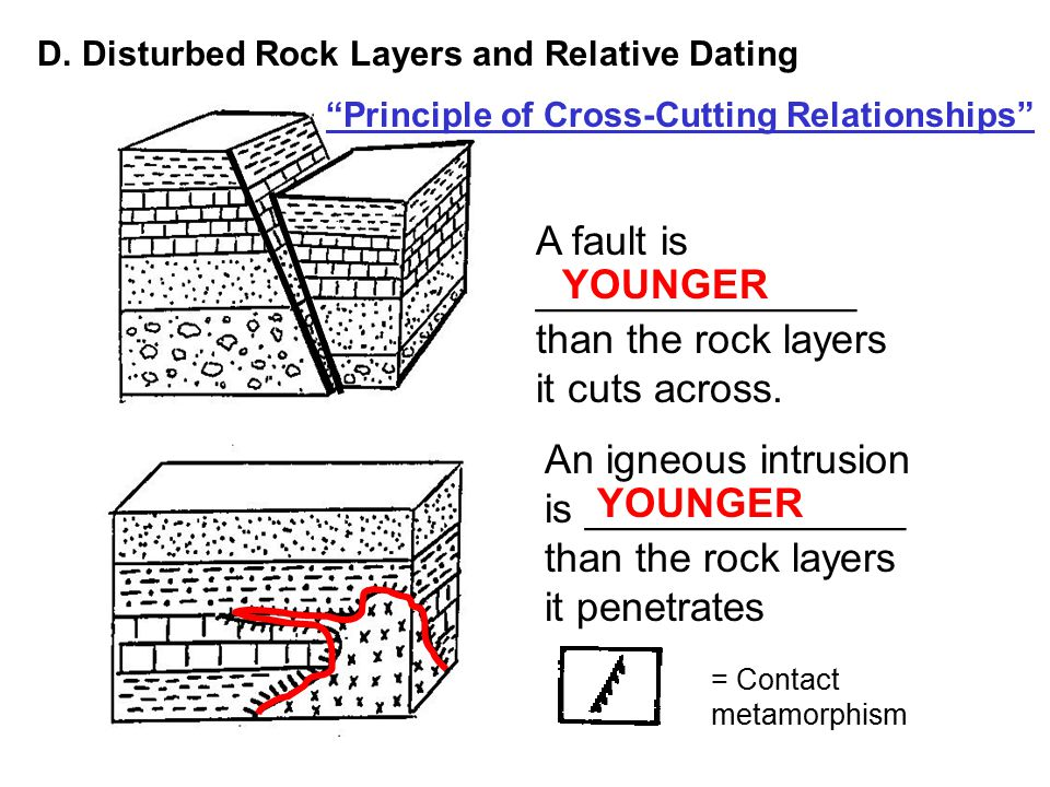 Define relative dating of fossils 9