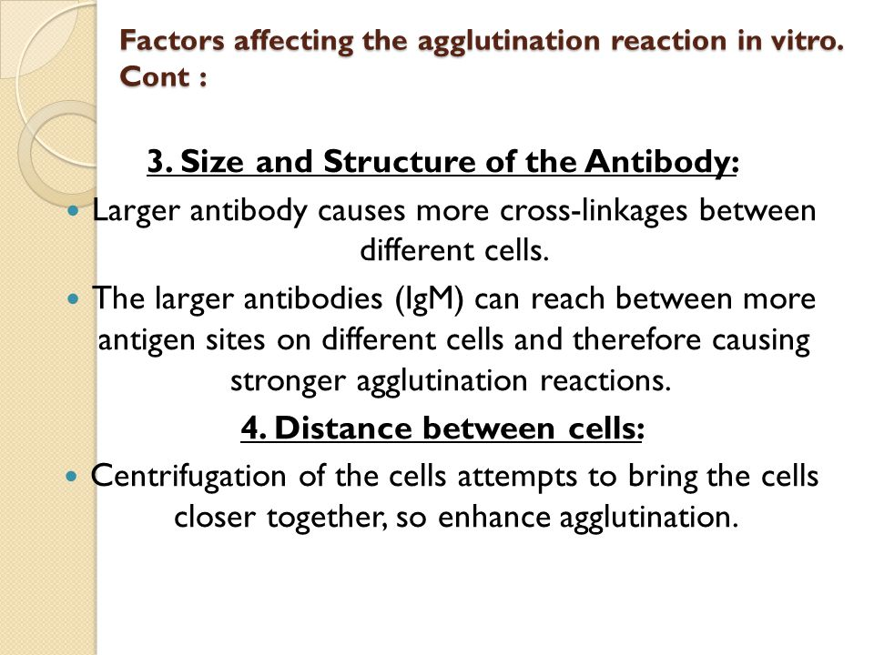 agglutination reaction of antigen and antibody relationship