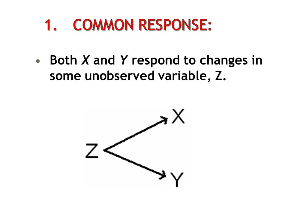 1. Common Response: Both X and Y respond to changes in some unobserved variable, Z.
