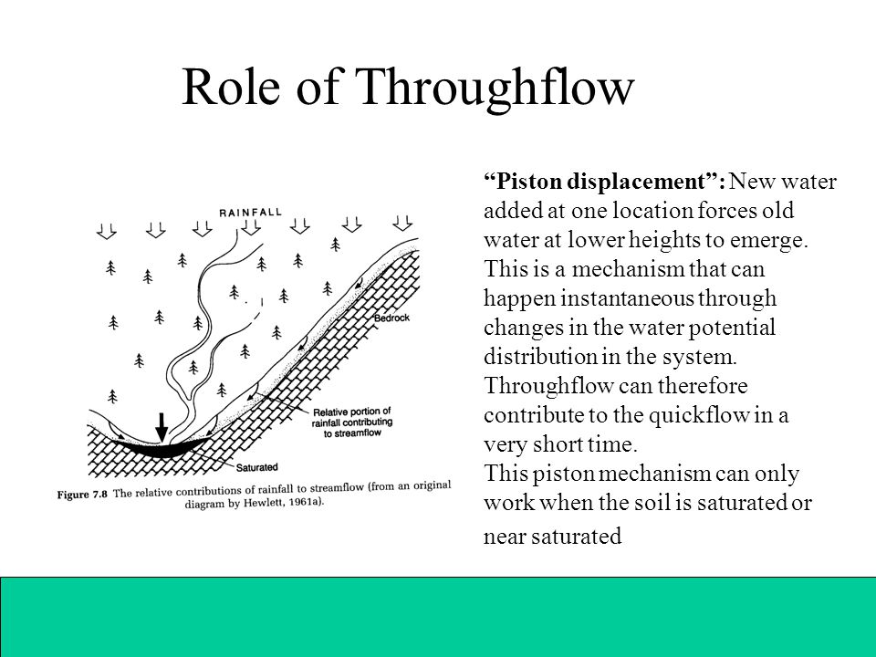 Role of Throughflow