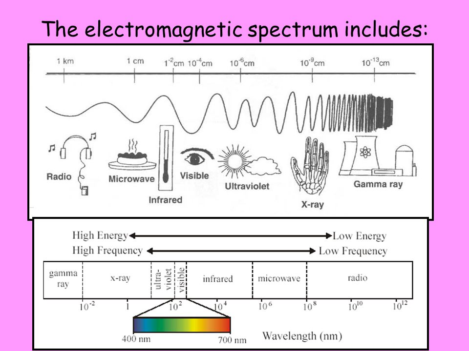 The electromagnetic spectrum includes: