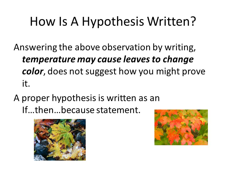 how do you write a hypothesis A scientific hypothesis is the initial building block in the scientific methodmany describe it as an educated guess, based on prior knowledge and observation.