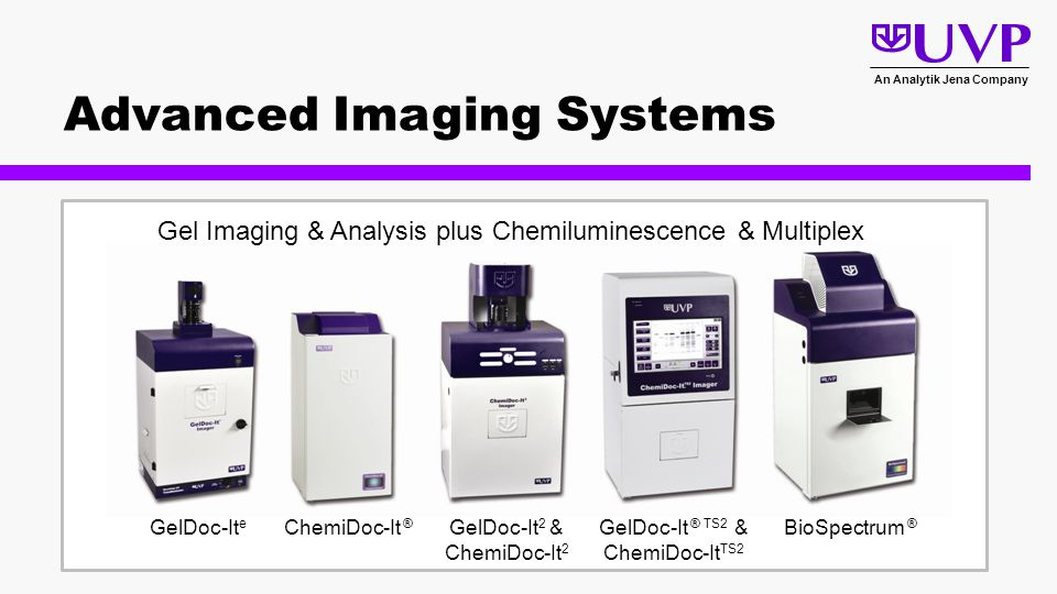 Bioimaging Systems For Genomics Proteomics Plant And
