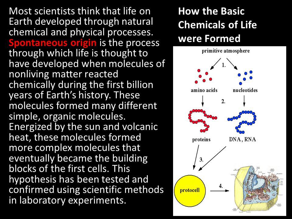 chemical origin of life pdf