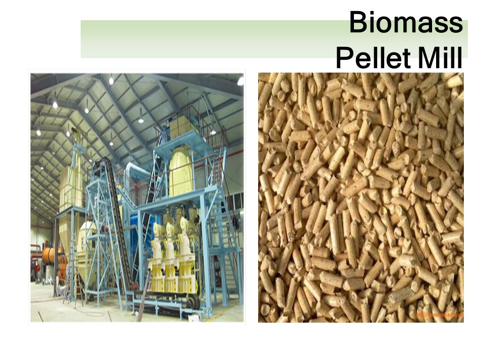 Giant king grass biomass project ppt video online download