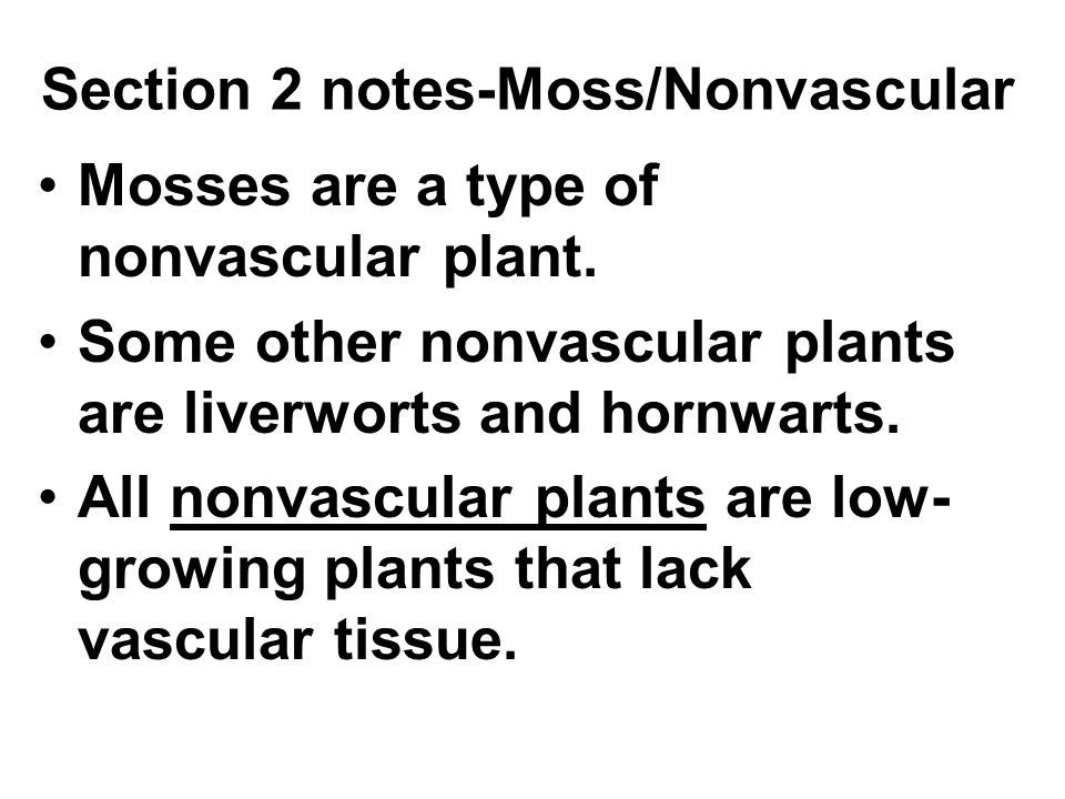 Section 2 notes-Moss/Nonvascular