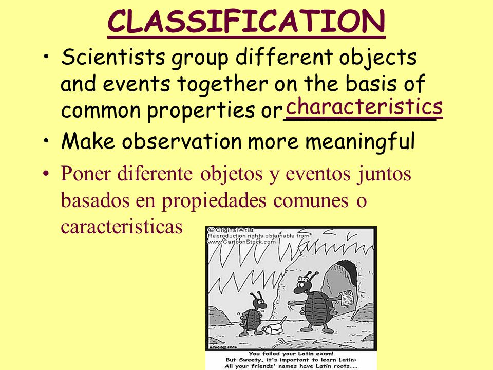 CLASSIFICATION Scientists group different objects and events together on the basis of common properties or___________.