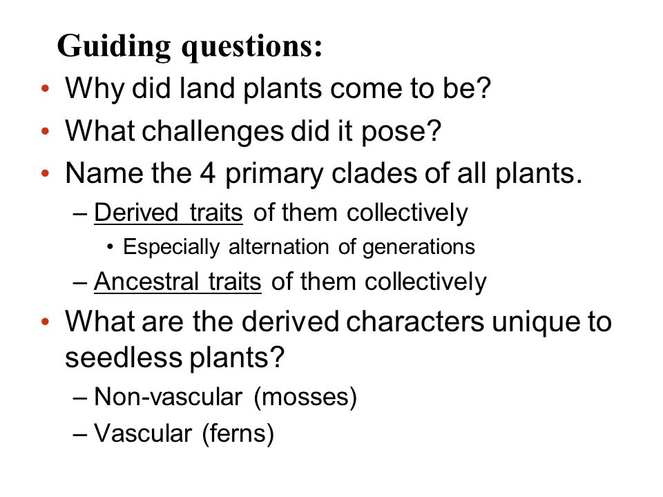 Guiding questions: Why did land plants come to be