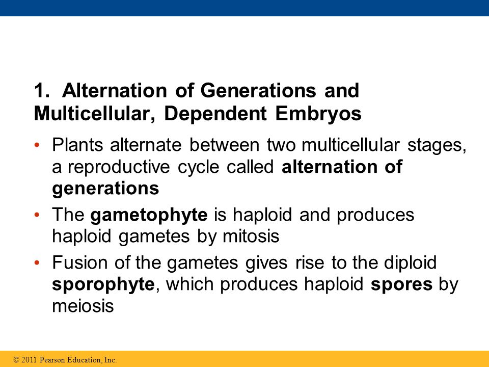 1. Alternation of Generations and Multicellular, Dependent Embryos