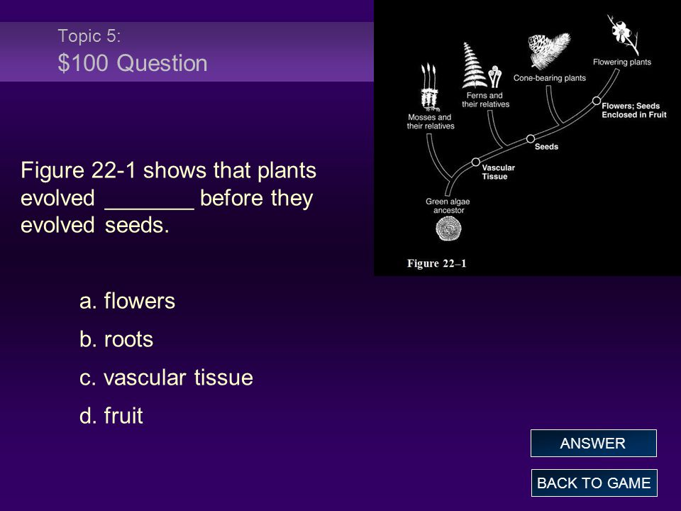 Topic 5: $100 Question Figure 22-1 shows that plants evolved _______ before they evolved seeds. a. flowers.