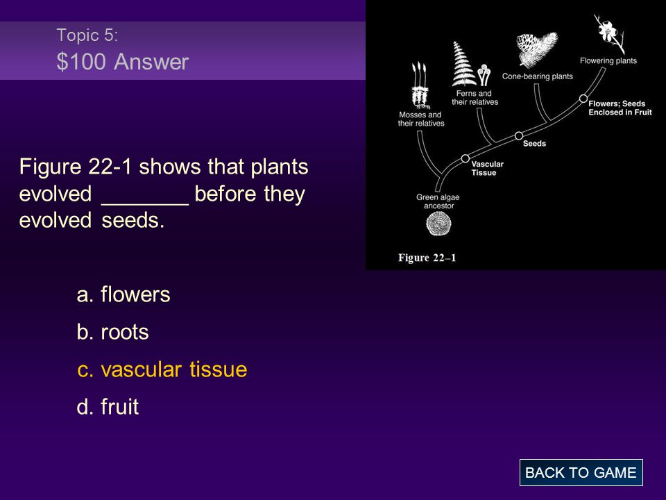 Topic 5: $100 Answer Figure 22-1 shows that plants evolved _______ before they evolved seeds. a. flowers.