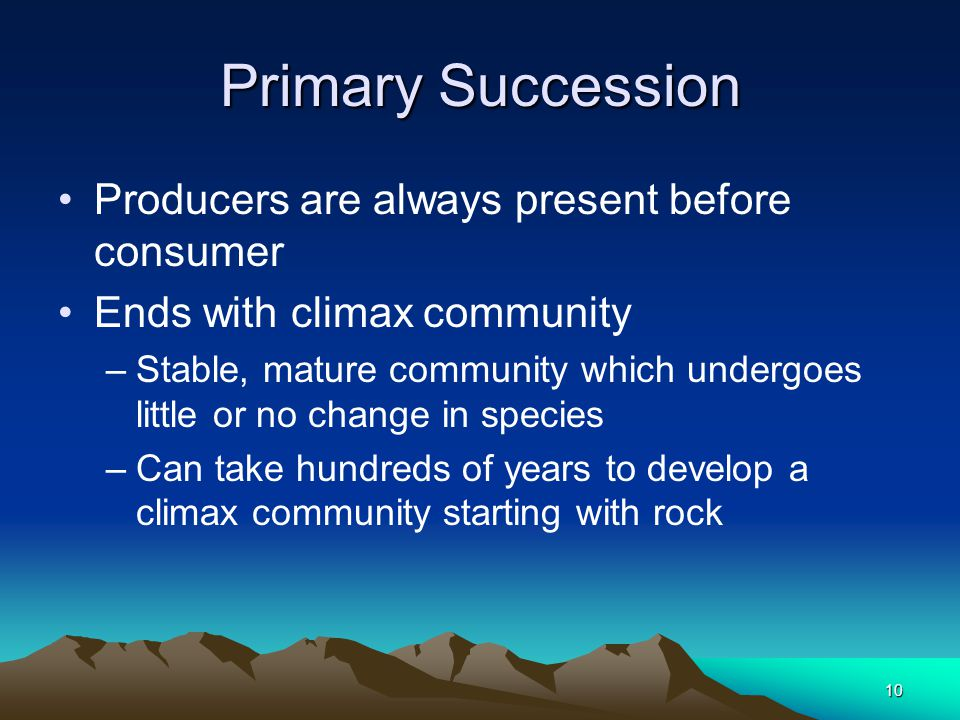 ecosystem succession essay The studies of succession communities in the artificial and natural ecosystems the studies of succession communities in artificial and natural ecosystems | essay.