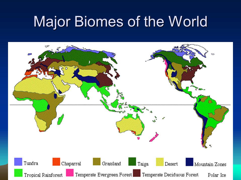 biomes of the earth essay To understand the nature of the earth's major biomes, one needs to learn for each: the global distribution pattern : where each biome is found and how each varies geographically a given biome may be composed of different taxa on different continents.