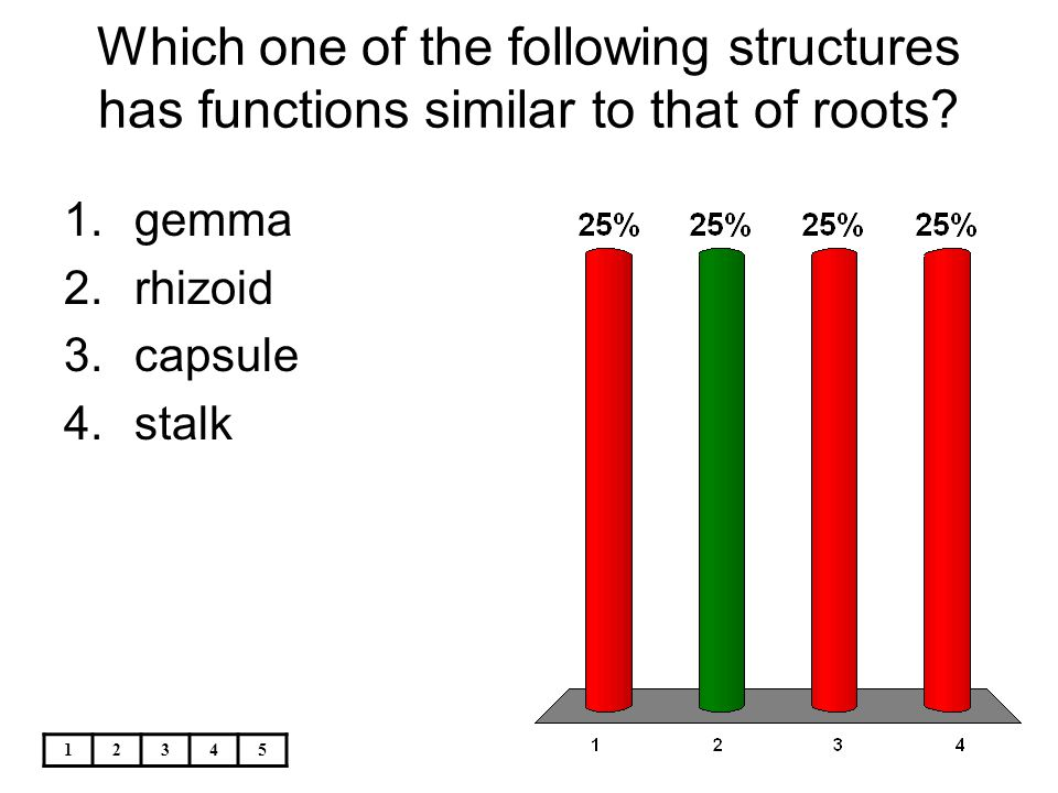 Which one of the following structures has functions similar to that of roots