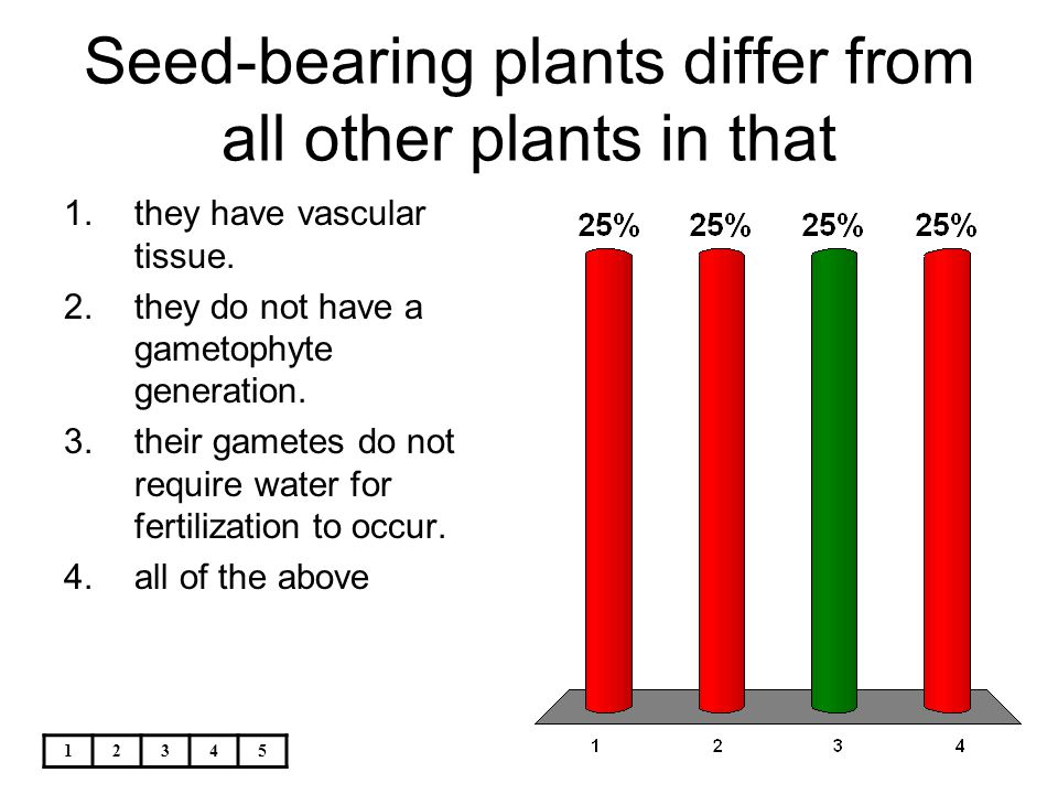 Seed-bearing plants differ from all other plants in that