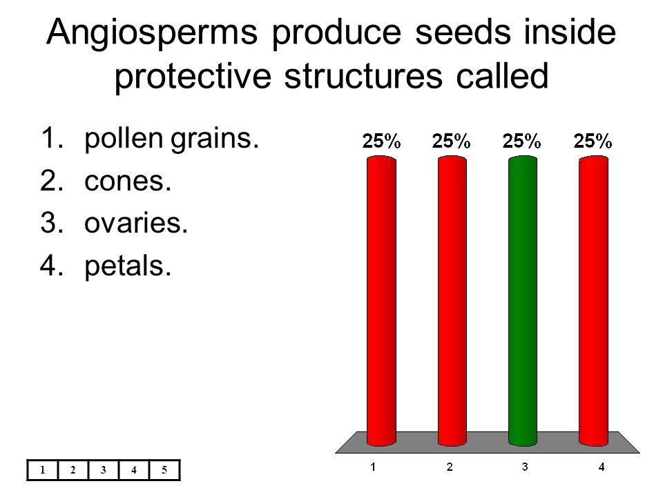 Angiosperms produce seeds inside protective structures called
