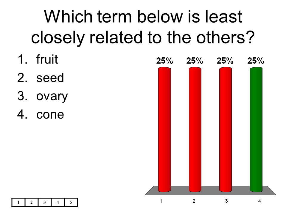 Which term below is least closely related to the others